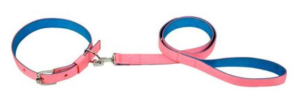 Kennel Soft  Nylon Two Color Collar & Lead (W = 1