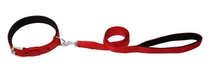 Kennel Padded Nylon Collar & Padded Nylon Lead (W = 1