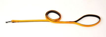 Kennel Soft Nylon Two Color Lead (W = 3/4