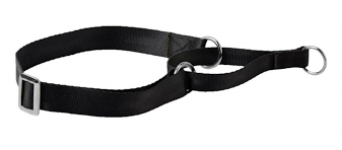 Kennel Nylon Martingal Collar (W = 3/4)