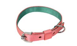 Kennel Soft Nylon Two Color Collar (W = 1