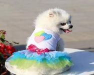 Whoof Whoof Wedding Frock For Dog