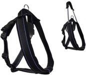 Patento Pet Padded With Collar & Harness Set For Dogs