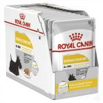 Royal Canin Dermacomfort loaf (Pouch) Pack Of 12