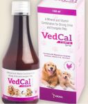 Vedall Pharma Vedcal Forte Syrup